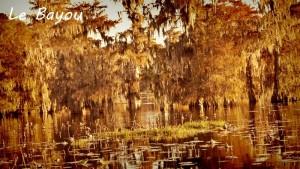 Louisiane le bayou
